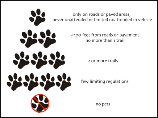 National Park paw scale