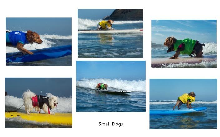 Surf-a-thon