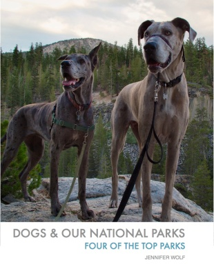 ebook Dog and our National Parks