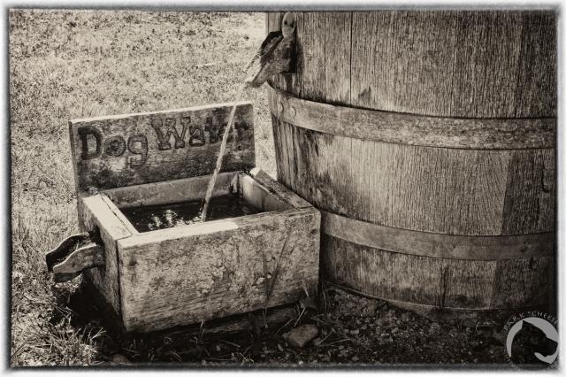 Fort Laramie NHS, water bowl, pet friendly