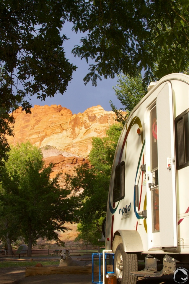 r-pod in the Fruita campground
