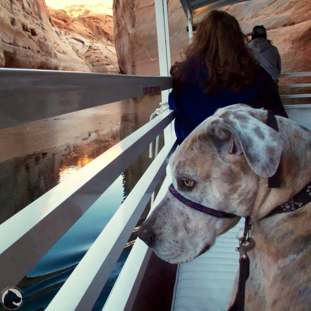 boat tour of Antelope Canyon