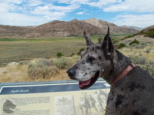 split rock, pet travel, dog hike